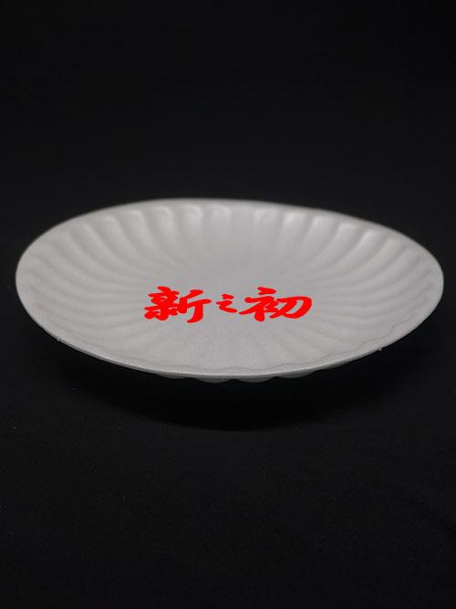 T24圓盤