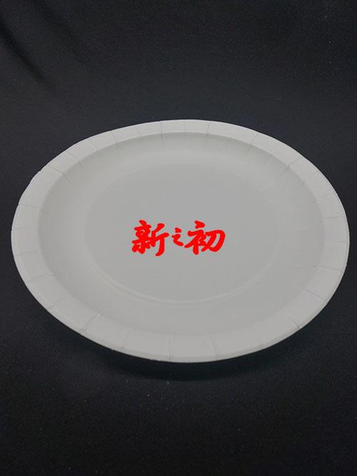 """6""""紙圓盤"""